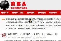 """""""紫菜头网赚博客""""SEO数据,广告抢手赚钱!"""